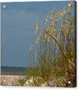 Smell The Salt Air Acrylic Print