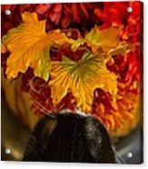 Smelling The Roses Or Something Like That Acrylic Print