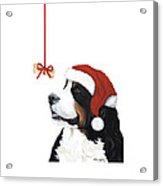 Smile Its Christmas Phone Acrylic Print