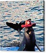 Smiley Dolphin Acrylic Print