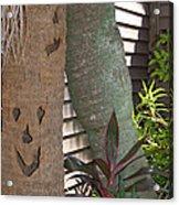 Smiley Tree Acrylic Print by Aimee L Maher Photography and Art Visit ALMGallerydotcom