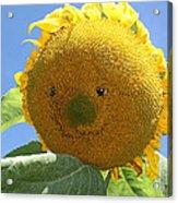 Smiling Sunflower Acrylic Print