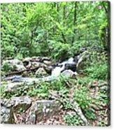 Smith Creek Downstream Of Anna Ruby Falls - 2 Acrylic Print