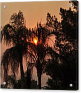 Smoke Covered Sky Sunset Thru The Palm Trees Acrylic Print
