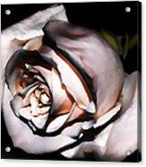 Smoked Rose Acrylic Print