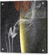 Smokey  Acrylic Print by Brian Roscorla