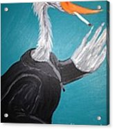 Smoking Egret In Leather Jacket Acrylic Print