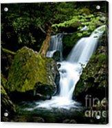 Smoky Mountain Falls Acrylic Print