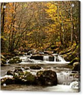 Smoky Mountain Gold II Acrylic Print