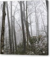 Smoky Mountain Hardwoods Acrylic Print