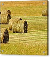 Smoky Mountain Hay Acrylic Print by Frozen in Time Fine Art Photography