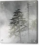 Smoky Mountain Mist Acrylic Print