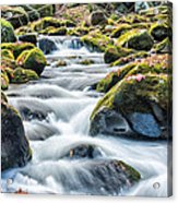 Smoky Mountain Rapids Acrylic Print by Victor Culpepper