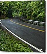 Smoky Mountain Road After Spring Rain E70 Acrylic Print
