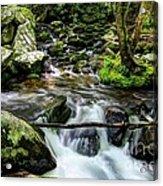 Smoky Mountain Stream 4 Acrylic Print