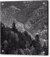Smoky Mountain View Black And White Acrylic Print