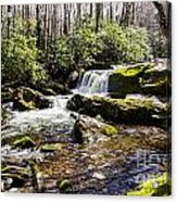Smoky Mountain Waterfalls Acrylic Print