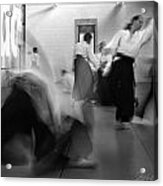 Smooth Aikido Acrylic Print