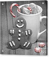 Snack For Santa Acrylic Print by Juli Scalzi