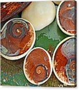 Snail Stones Acrylic Print