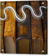 Snake And Antique Books Acrylic Print
