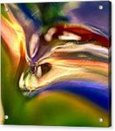 Snake Eyes Acrylic Print by Omaste Witkowski