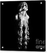 Snarl Acrylic Print