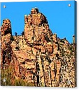 Snoopy Rock - Sabino Canyon Tucson Arizona  Acrylic Print