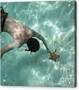 Snorkeller Touching Starfish On Seabed Acrylic Print