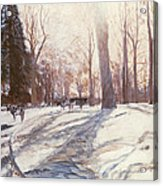 Snow At Broadlands Acrylic Print