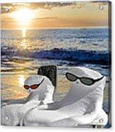 Snow Bird Vacation Acrylic Print