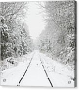 Snow Bound Acrylic Print by Nancy Edwards