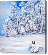 Snow Bunny Acrylic Print