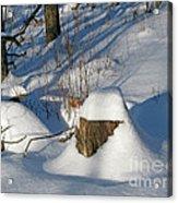 Snow-capped Acrylic Print