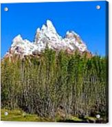 Snow-capped Acrylic Print