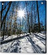 Snow Covered Forest Acrylic Print