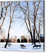 Snow Covered Green Acrylic Print