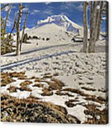 Snow Covered Mount Hood In Oregon Acrylic Print