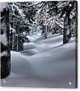 Snow Covered Trail Acrylic Print