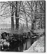 Snow Creek Woods Acrylic Print