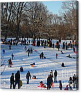 Snow Day - Fun Day At The Park Acrylic Print