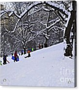 Snow Day In The Park Acrylic Print by Madeline Ellis