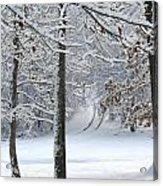Snow Day Iv Acrylic Print