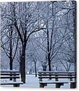 Snow Day Acrylic Print by Richie Stewart