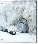 Snow Dream Acrylic Print by Julie Palencia