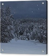 Snow Falling In A Forest Acrylic Print