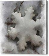 Snow Flake 01 Photo Art Acrylic Print