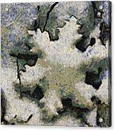 Snow Flake 04 Photo Art Acrylic Print