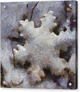 Snow Flake Enjoy The Beauty Photo Art Acrylic Print