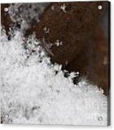 Snow Flake Macro 2 Acrylic Print